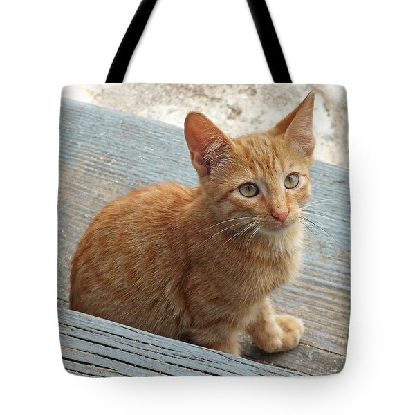 Orange Kitten 2 At The Front Porch Tote Bag