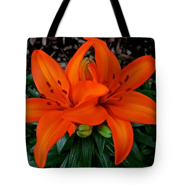 Orange Lilies Tote Bag