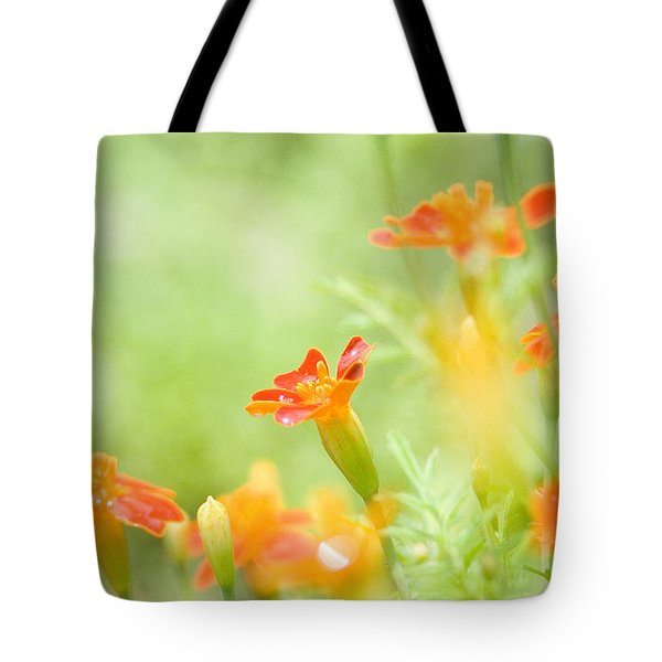 Orange Meadow Tote Bag by Ann Lauwers