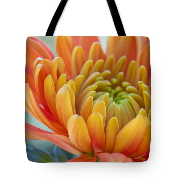 Orange Mum Closeup Tote Bag
