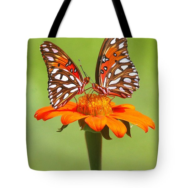 Orange On Orange Tote Bag