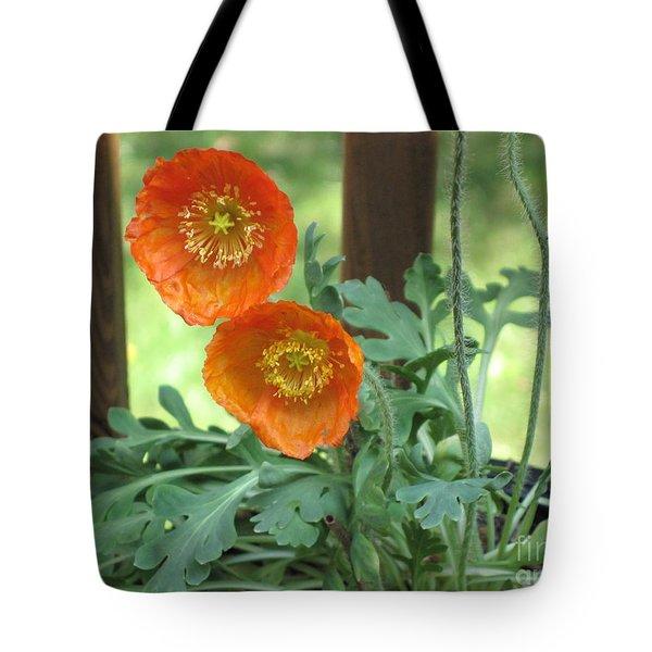 Orange Poppies Tote Bag