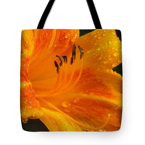Orange Rain Tote Bag by Karen Wiles