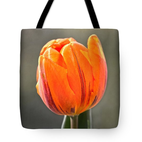 Orange Red Tulip Square Tote Bag by Sandi OReilly