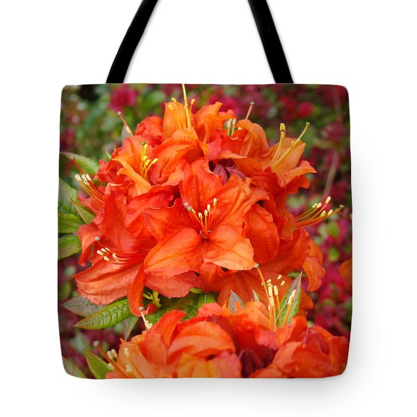 Orange Rhododendron Flowers Art Prints Tote Bag by Baslee Troutman