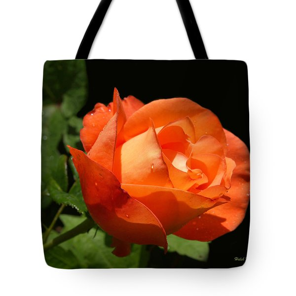 Tote Bag featuring the photograph Orange Rose by Haleh Mahbod