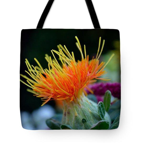 Orange Safflower Tote Bag