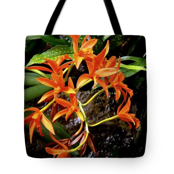 Orange Tendrils Tote Bag