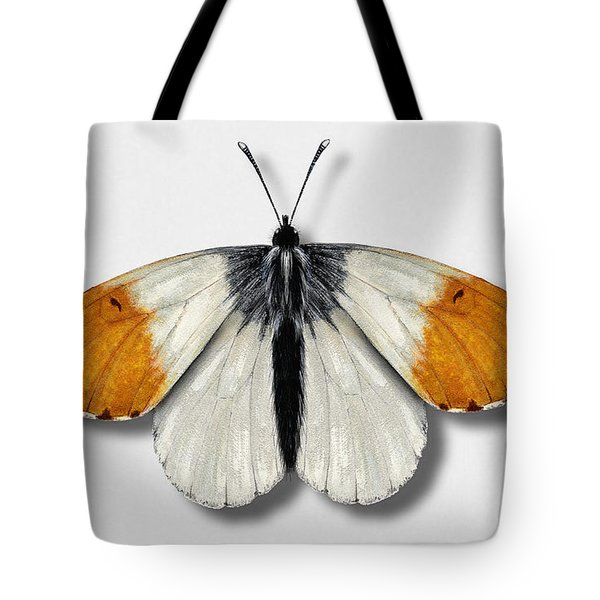 Orange Tip Butterfly - Anthocharis Cardamines Naturalistic Painting - Nettersheim Eifel Tote Bag