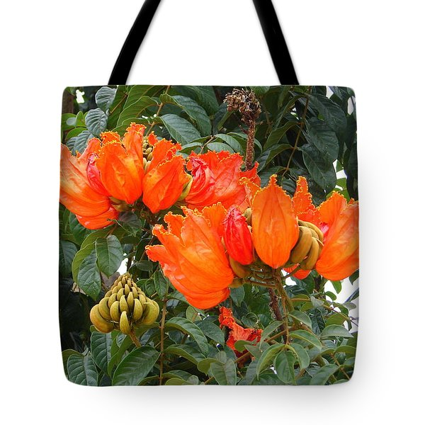 Tote Bag featuring the photograph Orange Tree Blossoms by Lew Davis