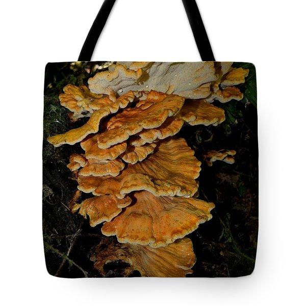 Orange Tree Fungus Tote Bag
