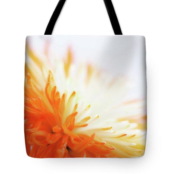 Orange Whisper Tote Bag by Lisa Knechtel