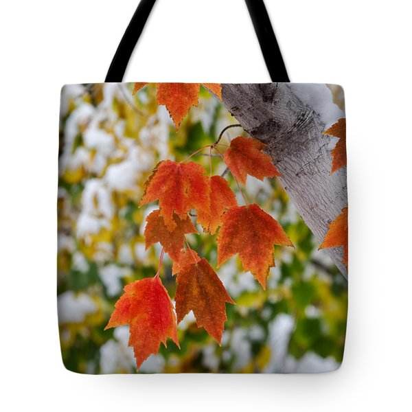 Tote Bag featuring the photograph Orange White And Green by Ronda Kimbrow