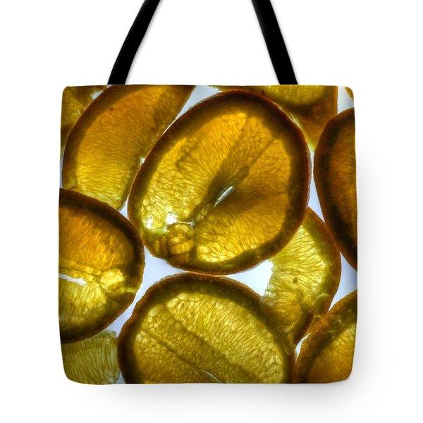 Oranges Tote Bag by Jane Linders