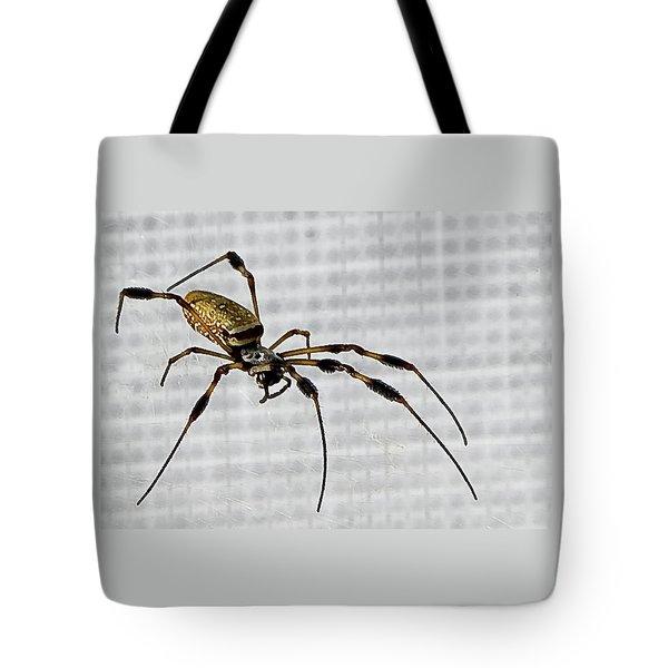 Orb Spider 4 Tote Bag by Lynn Andrews