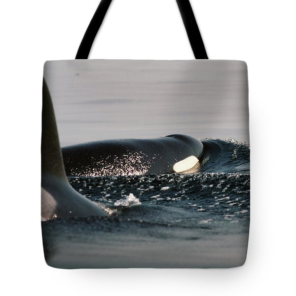 Tote Bag featuring the photograph Orcas/killer Whales Off The San Juan Islands 1986 by California Views Mr Pat Hathaway Archives