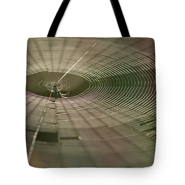 Tote Bag featuring the photograph Orchard Orbweaver #1 by Paul Rebmann