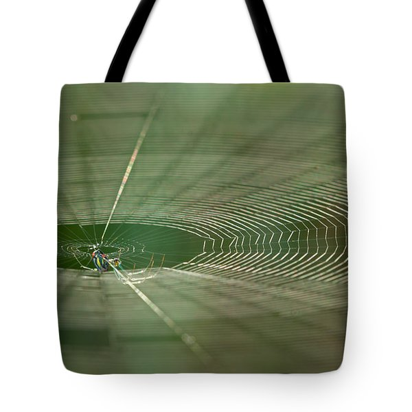 Tote Bag featuring the photograph Orchard Orbweaver #2 by Paul Rebmann