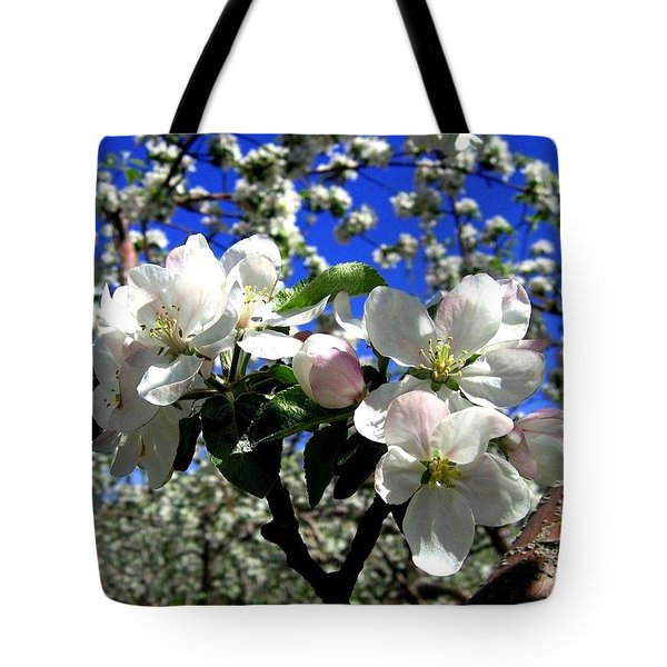 Orchard Ovation Tote Bag by Will Borden