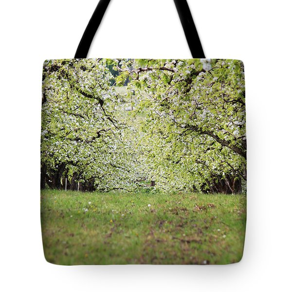 Tote Bag featuring the photograph Orchard by Patricia Babbitt