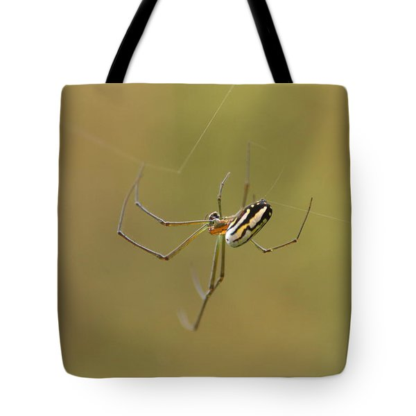 Orchard Spider Tote Bag
