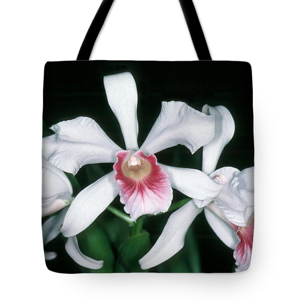 Orchid 10 Tote Bag