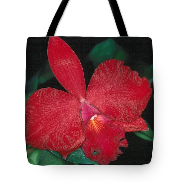 Orchid 12 Tote Bag