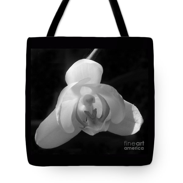 Orchid #2 Tote Bag