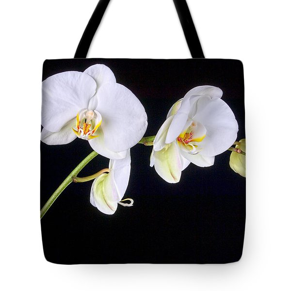 Orchid 2a Tote Bag by Mauro Celotti