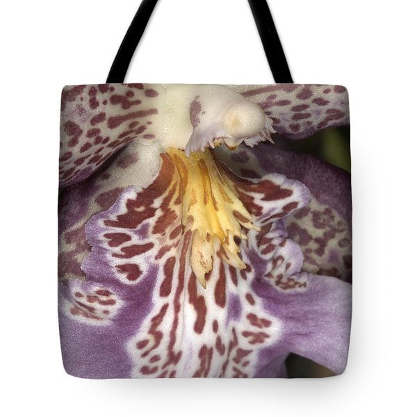Orchid 483 Tote Bag