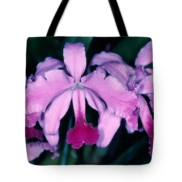 Orchid 6 Tote Bag