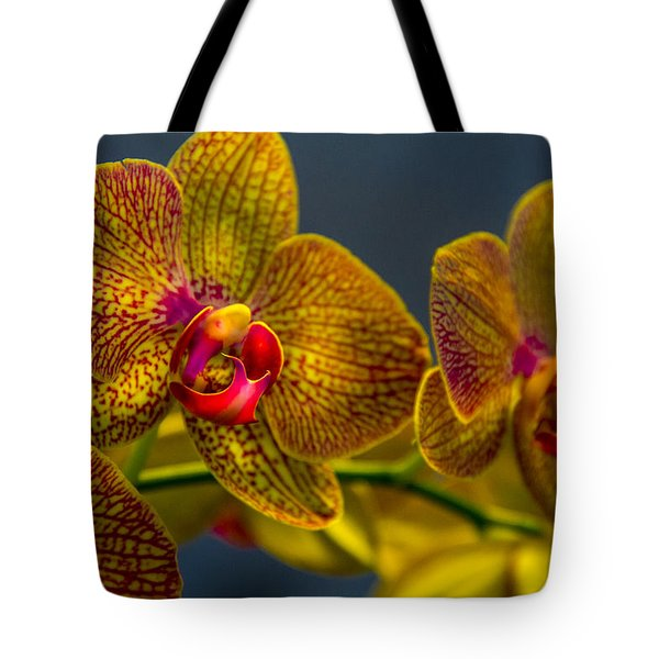 Orchid Color Tote Bag