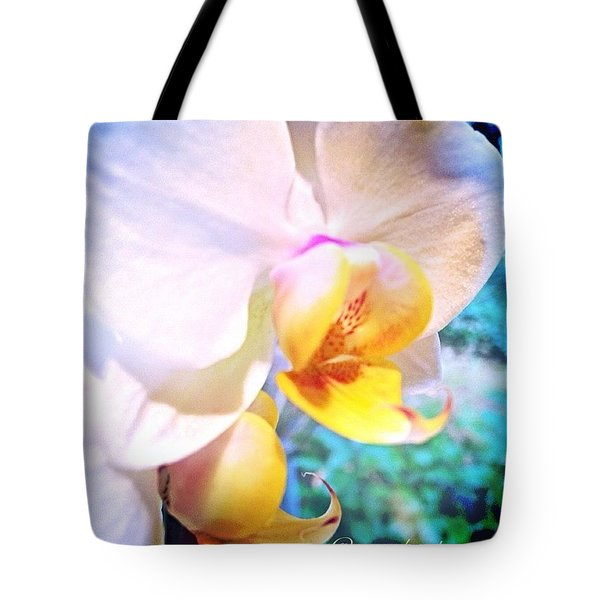White Christmas Orchid Tote Bag