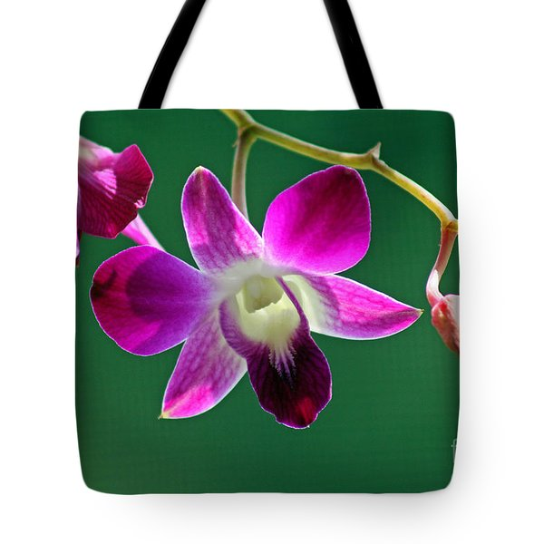 Orchid Flower Tote Bag by Karen Adams