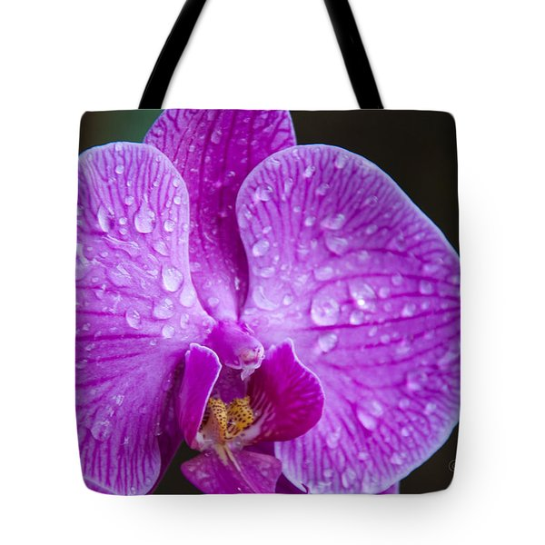 Orchid Tote Bag by Gandz Photography