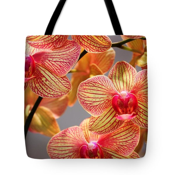 Orchid Tote Bag by Judy Palkimas