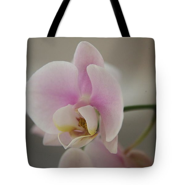 Orchid Tote Bag by Lynn England