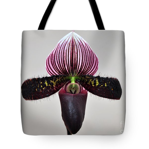 Tote Bag featuring the photograph Orchid Paphiopedilum Satchel Paige X Black Beauty by Susan Wiedmann