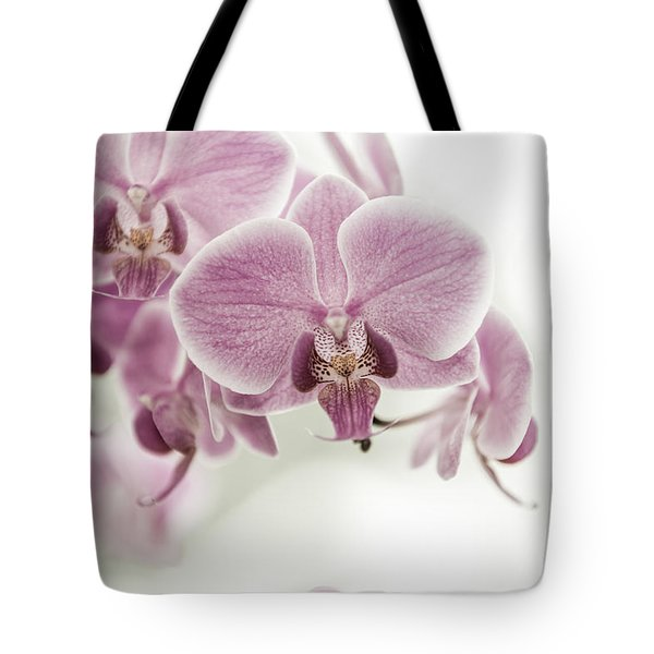Orchid Pink Vintage Tote Bag by Hannes Cmarits