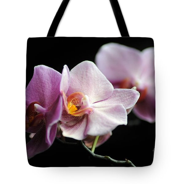 Tote Bag featuring the photograph Orchid by Randi Grace Nilsberg