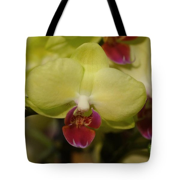 Orchids 181 Tote Bag