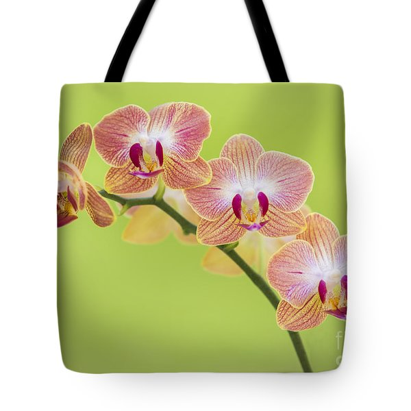Orchids Tote Bag by Diane Diederich