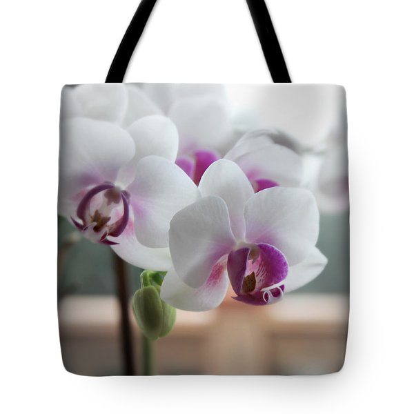 Tote Bag featuring the photograph Orchids In Sunny Window by Katie Wing Vigil