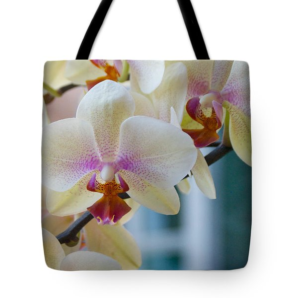 Orchids In The Morning Light Tote Bag by Debbie Karnes
