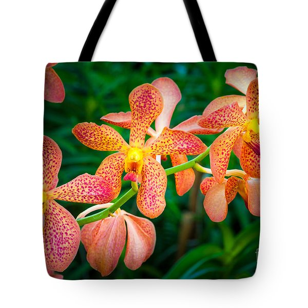 Orchids Tote Bag by Inge Johnsson