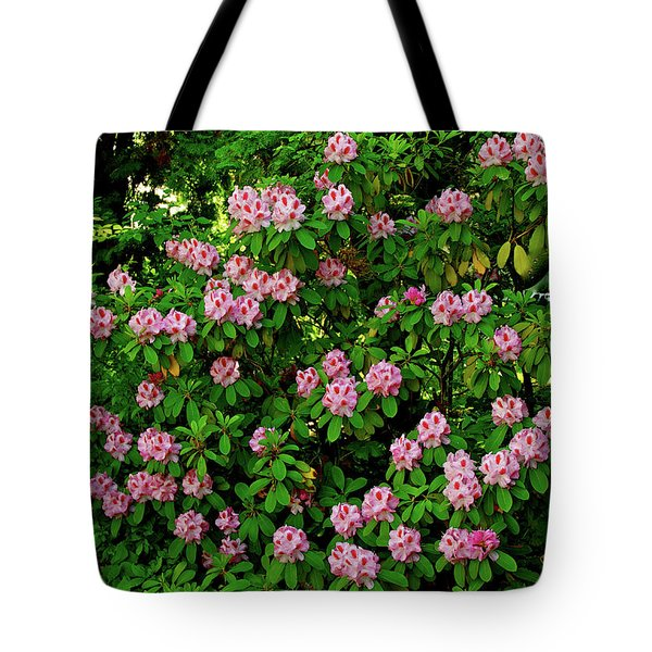 Oregon Azaleas Tote Bag by Ed  Riche