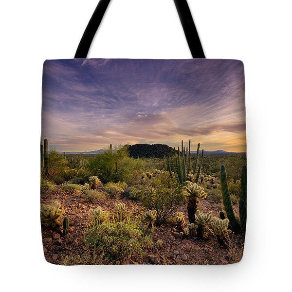 Organ Pipe Cactus Sunset  Tote Bag by Saija  Lehtonen