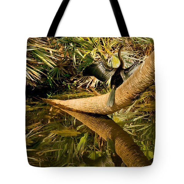 Oriental Darter Anhinga Melanogaster Tote Bag