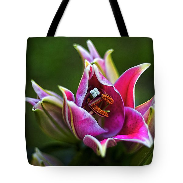 Tote Bag featuring the photograph Oriental Day Lily by Ben Shields