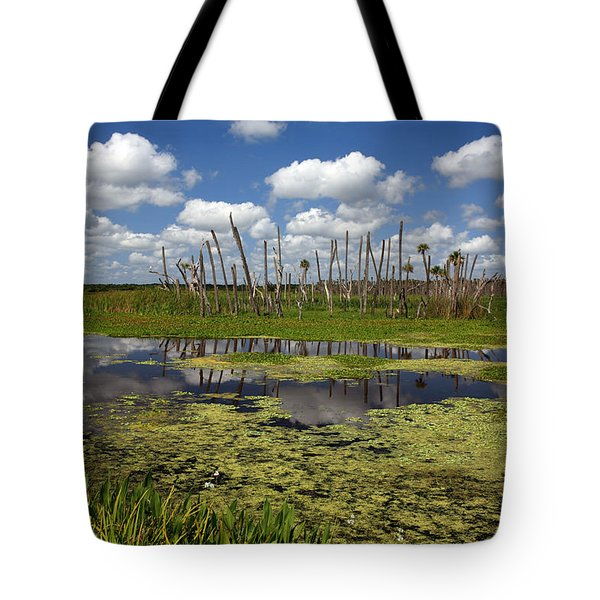 Orlando Wetlands Cloudscape 2 Tote Bag by Mike Reid